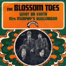 Blossom Toes - Postcard